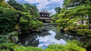 jardin jap 4